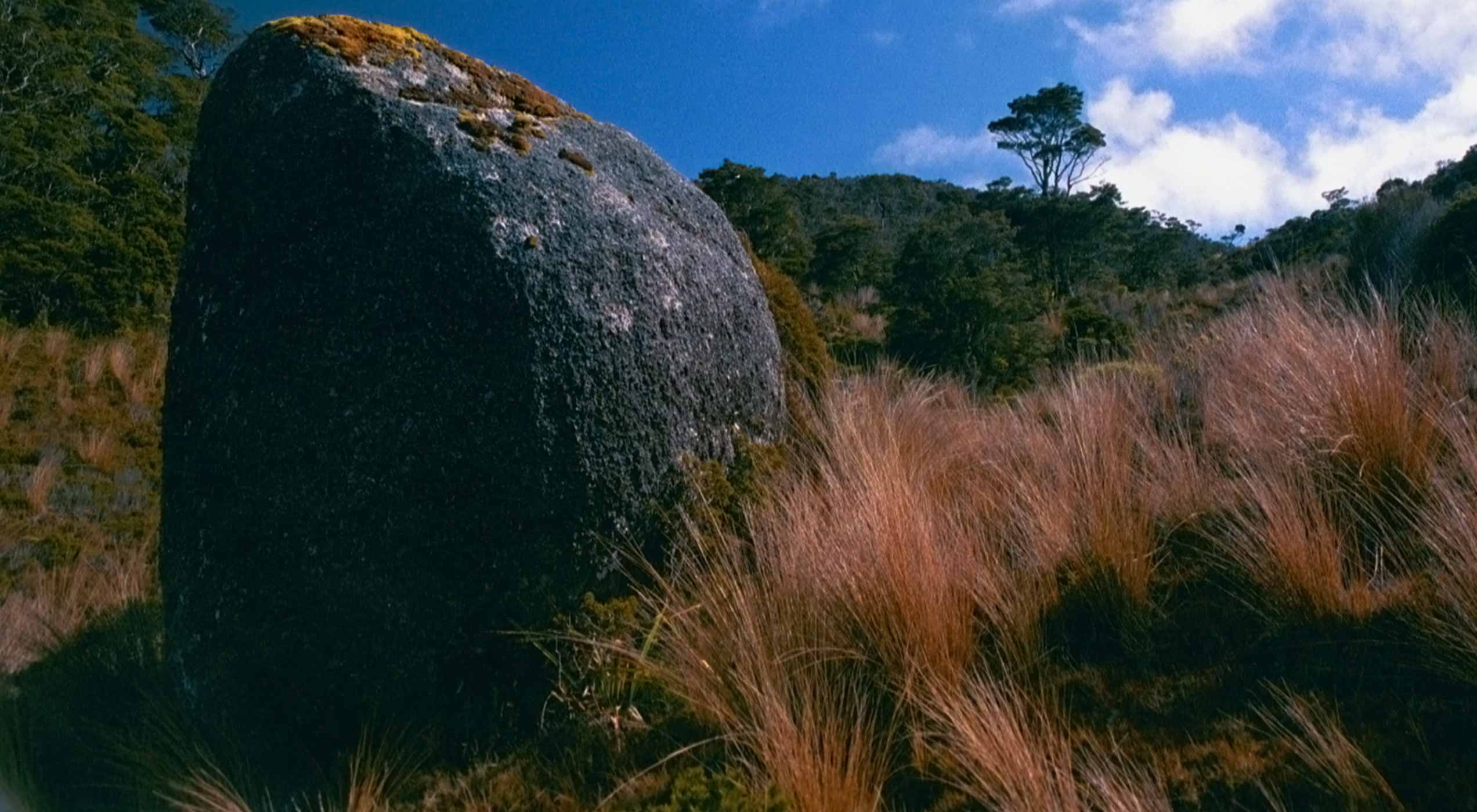 Blue Rock at Heaphy Track