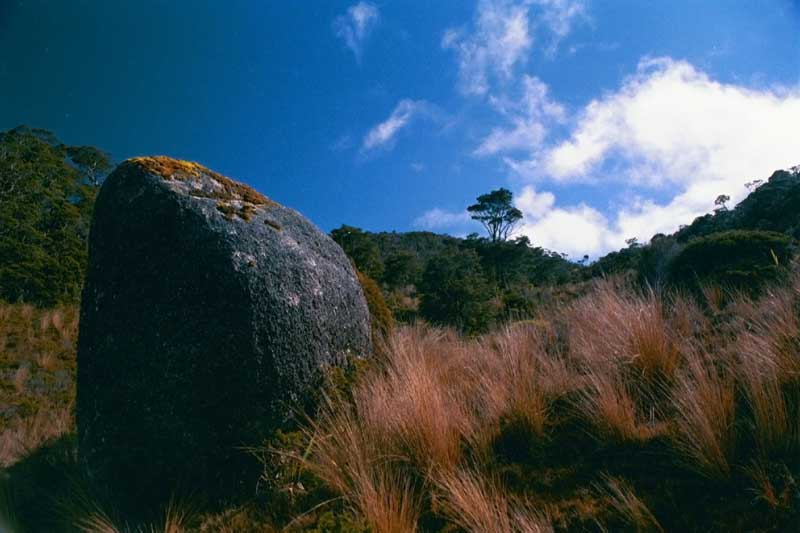 Gouland Downs Blue Rock