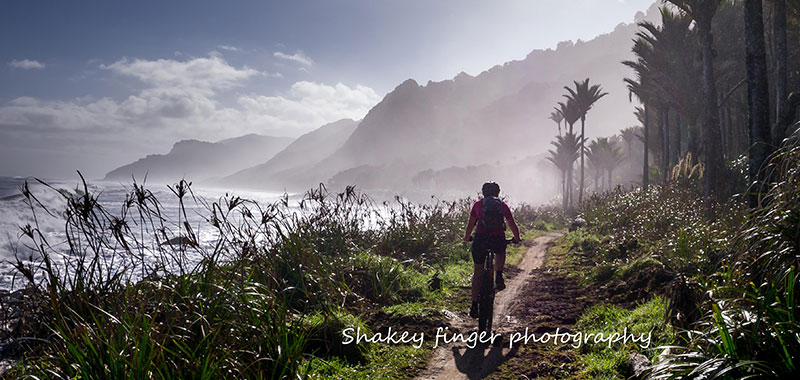 Mountainbiker on the Heaphy Track (Photo by Stephen Roberts)