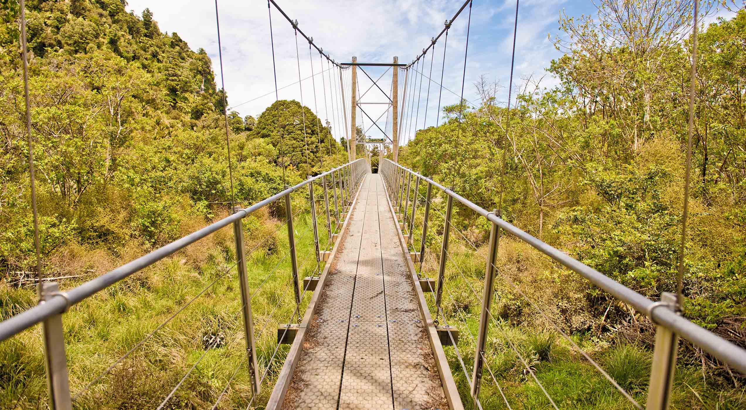 Bridge over the Heaphy River