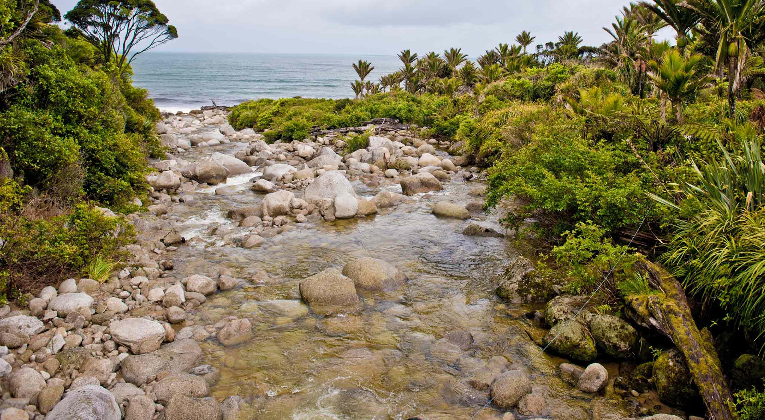 Katipo Creek