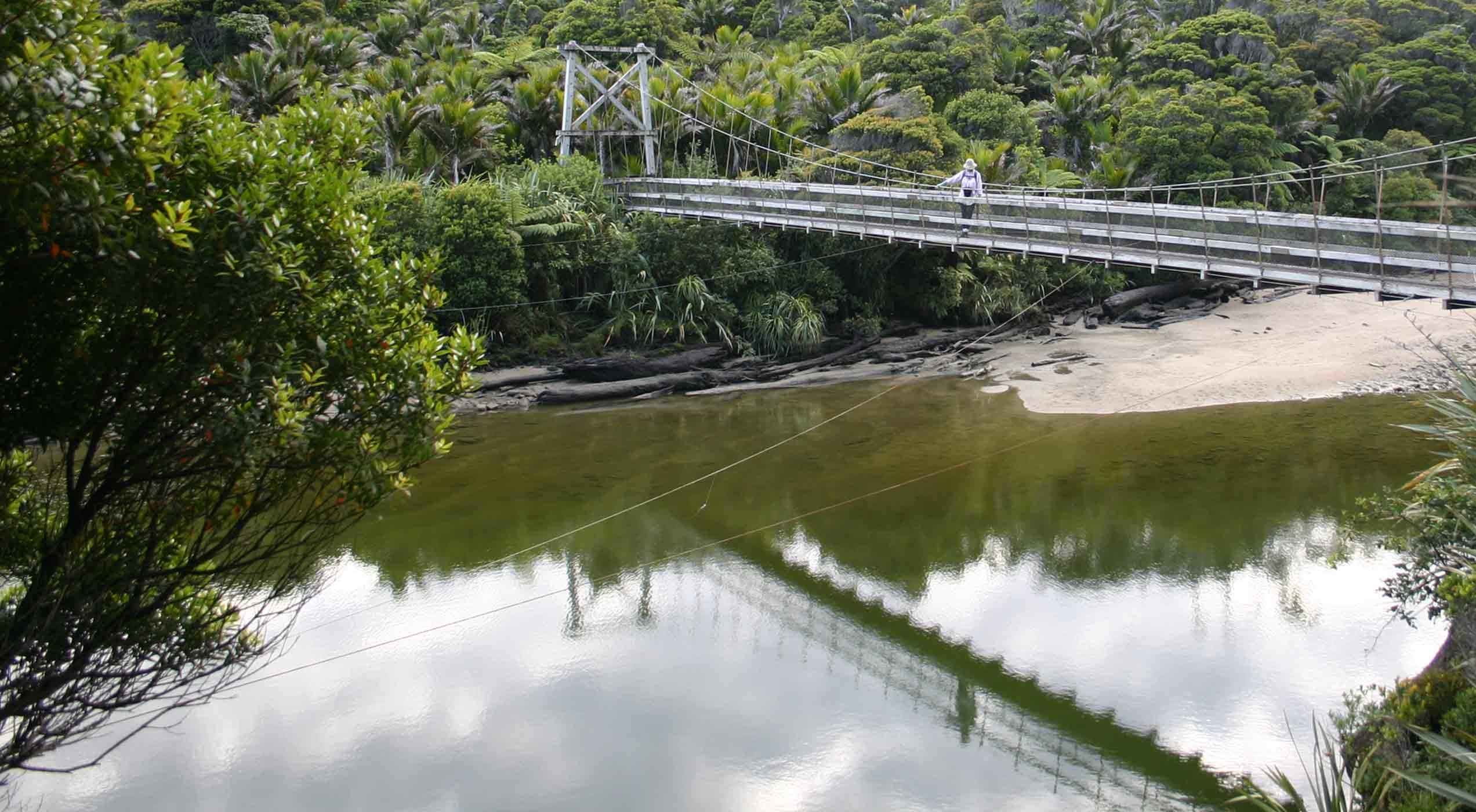 Bridge over the Kohaihai River