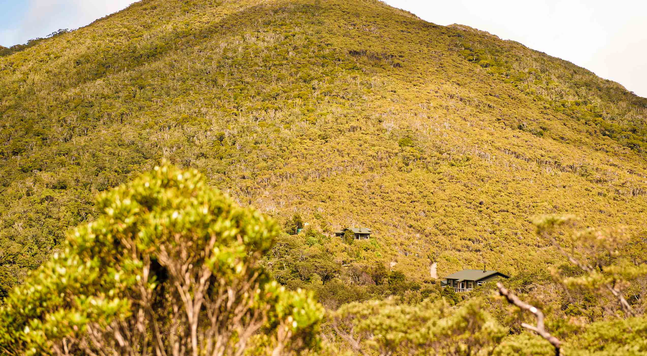 Perry Saddle Huts