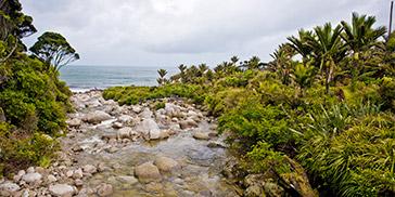 Wekakura Creek